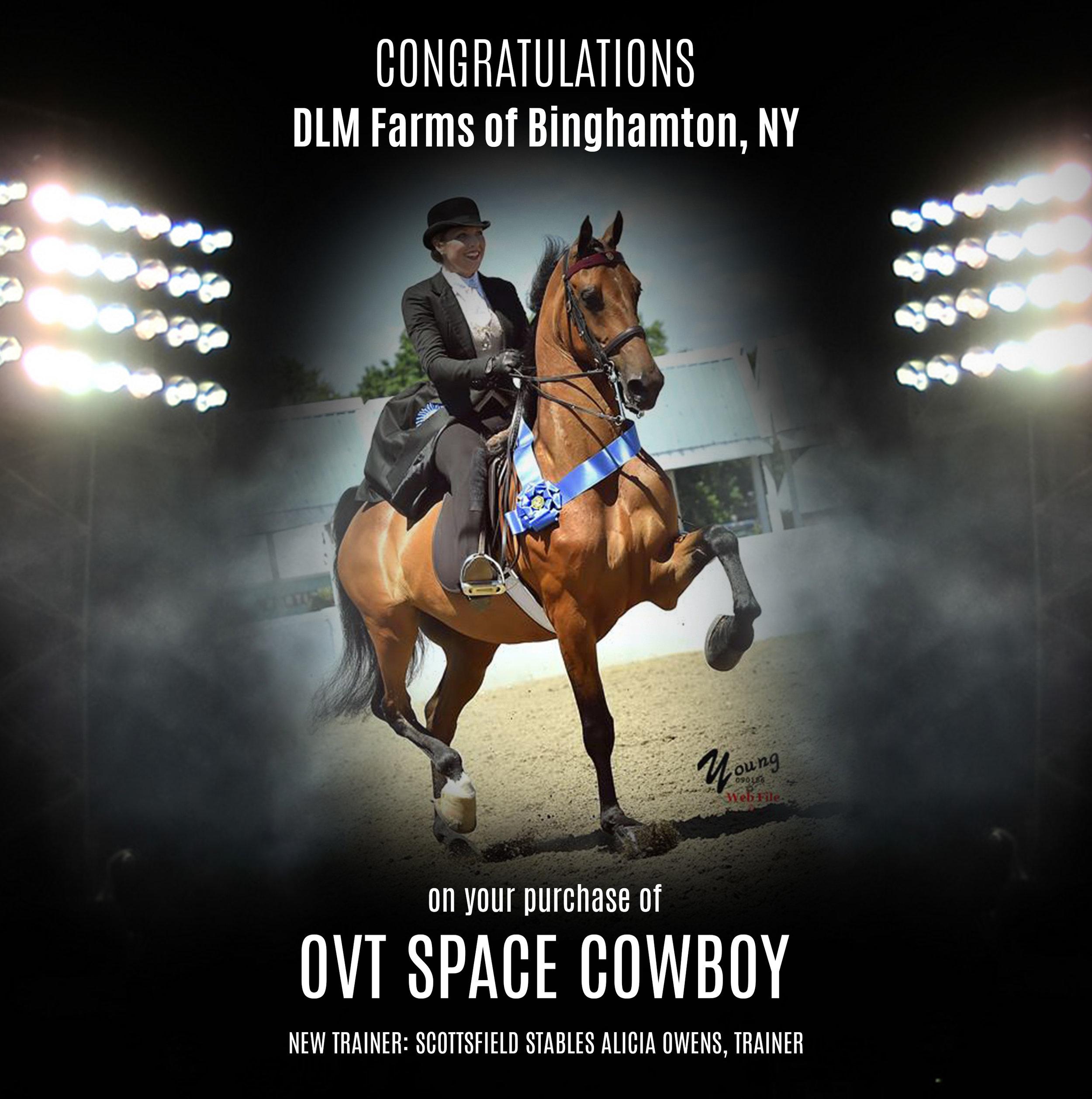OVT Space Cowboy.jpg
