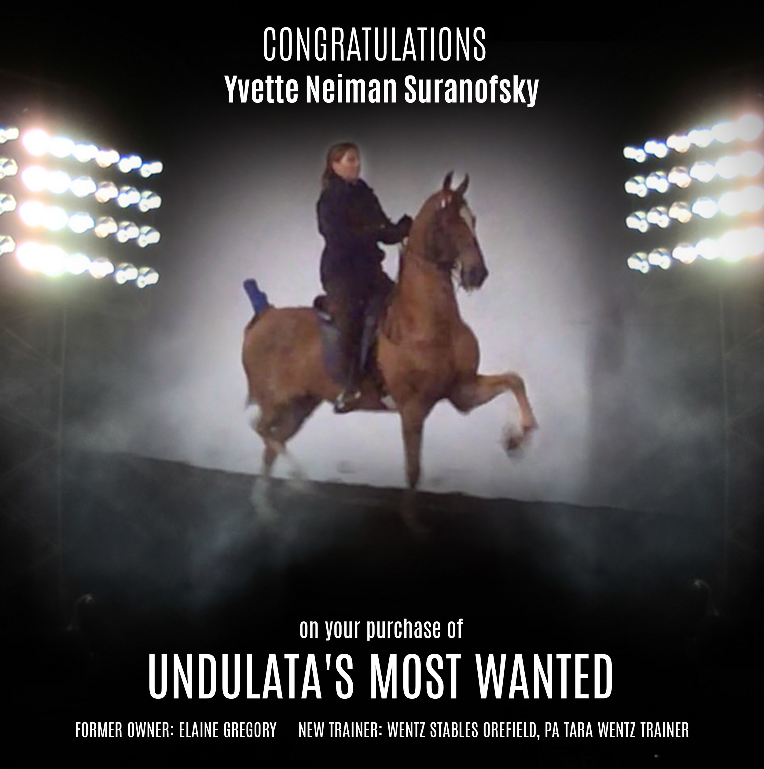 Undulata's Most Wanted.jpg
