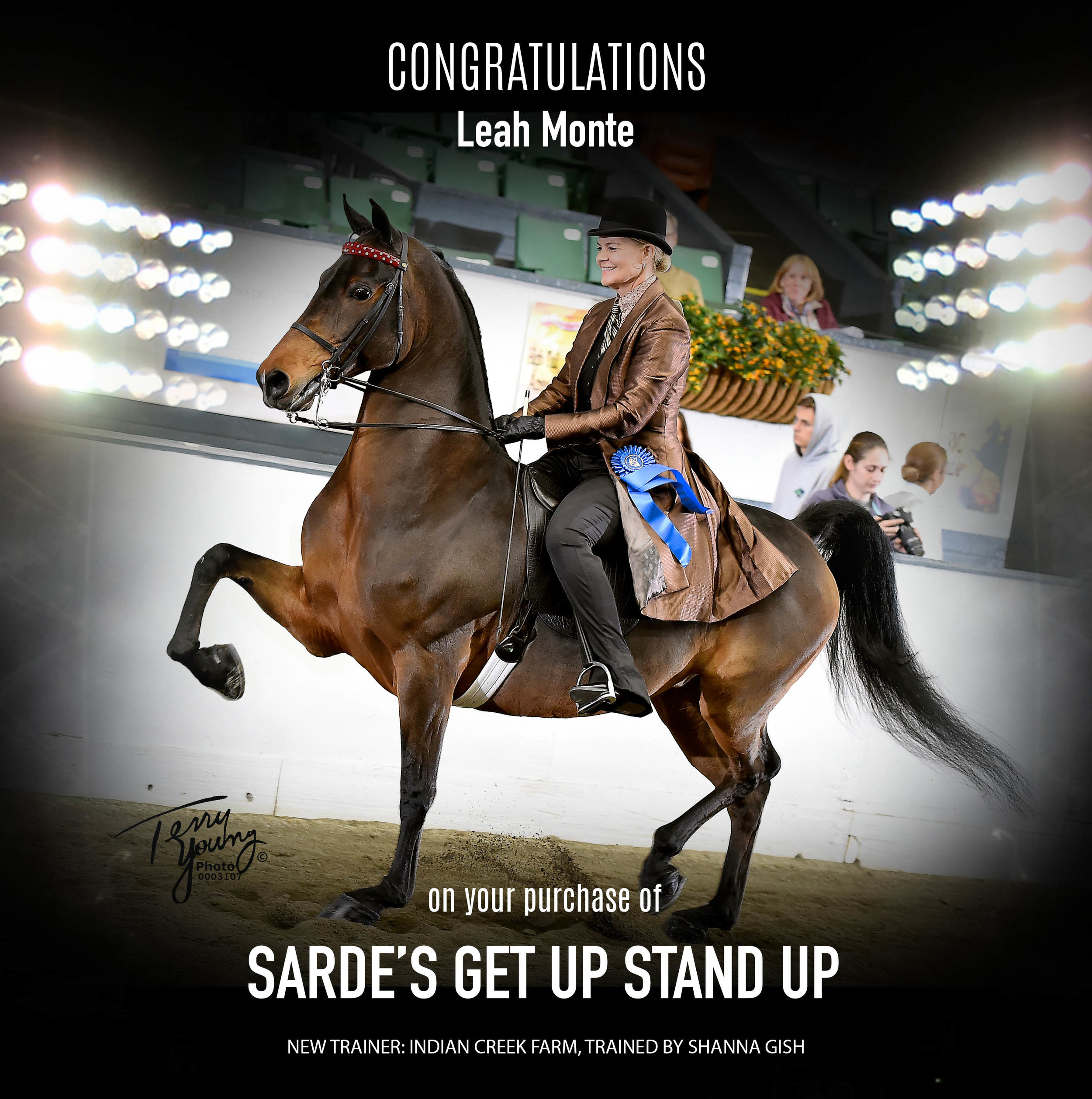 Sarde's Get Up Stand Up.jpg