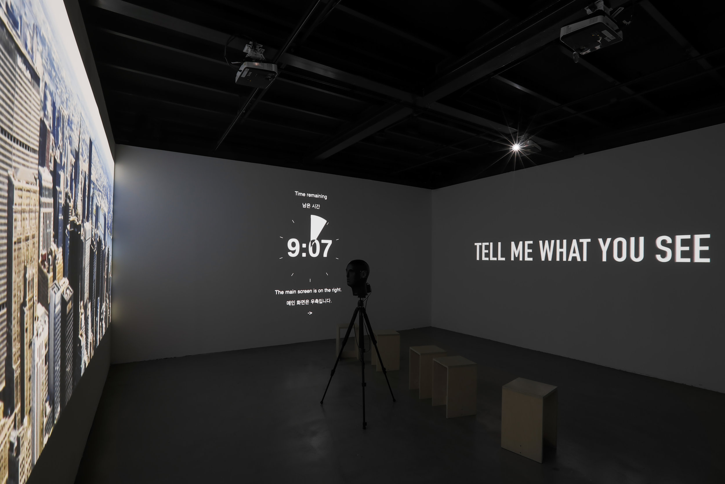 TELL ME WHAT YOU SEE, 2018  video installation (deep learning algorithm)