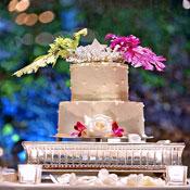 cake4T.jpg