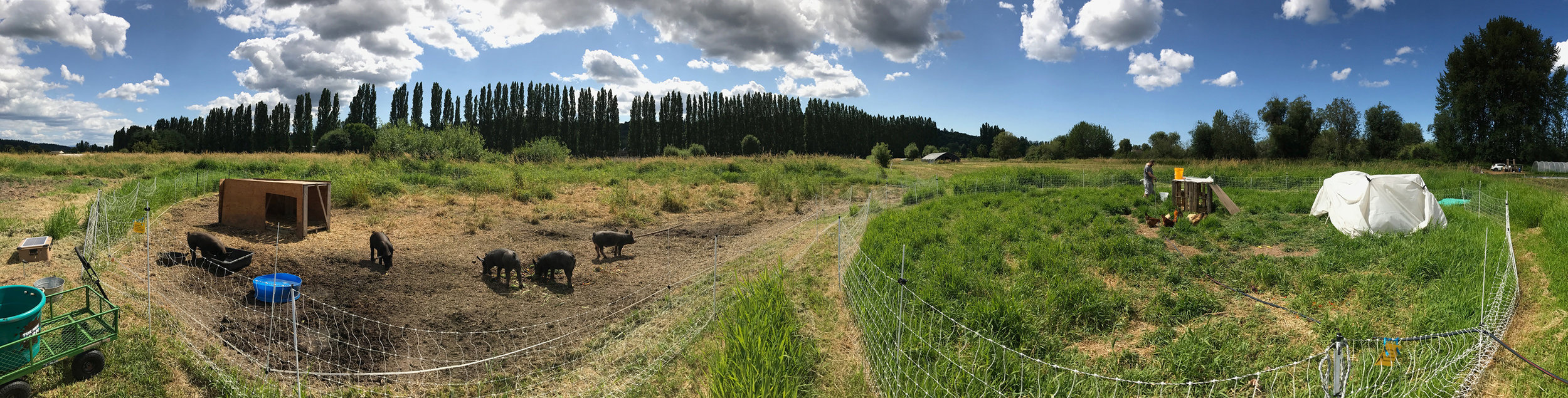 farm-panoramic-crop-2-800pxH.jpg
