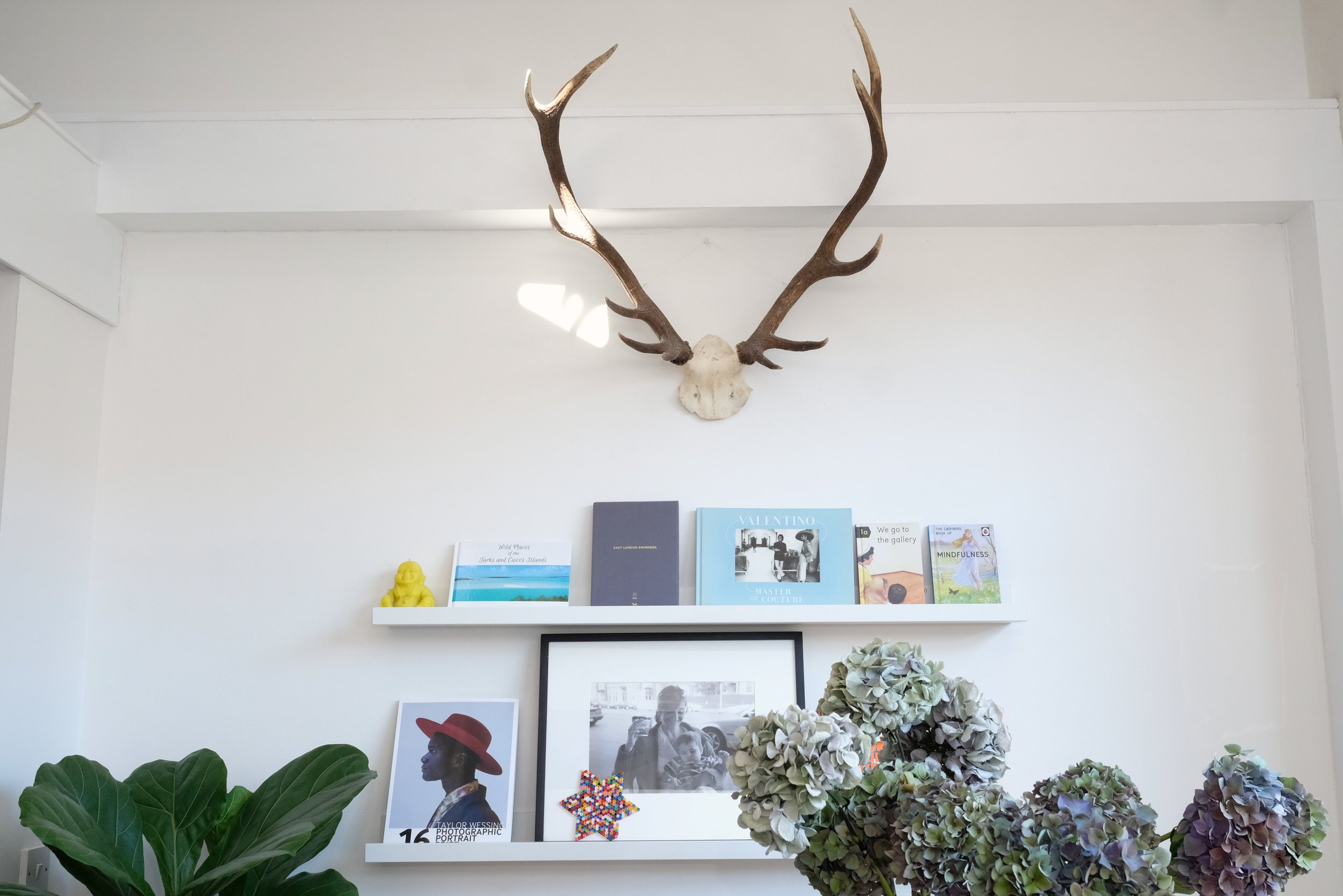 Book_Wall_Antlers