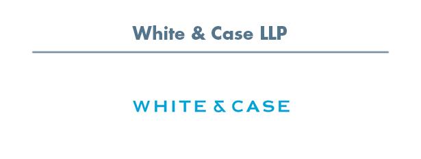 slide white case.jpg