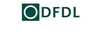 DFDL logo.jpg