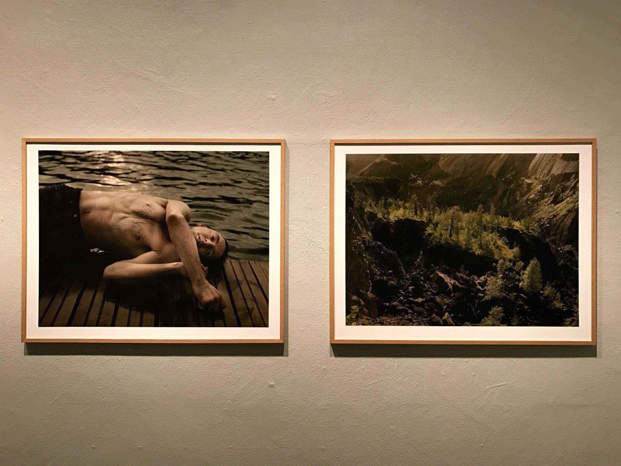 Elis Hoffman: Fading