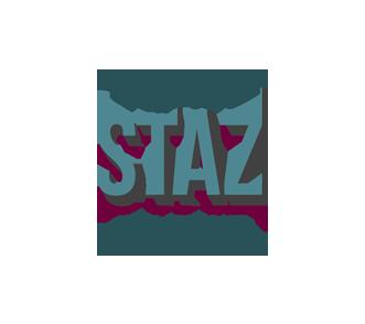 lejdastaz-logo.png