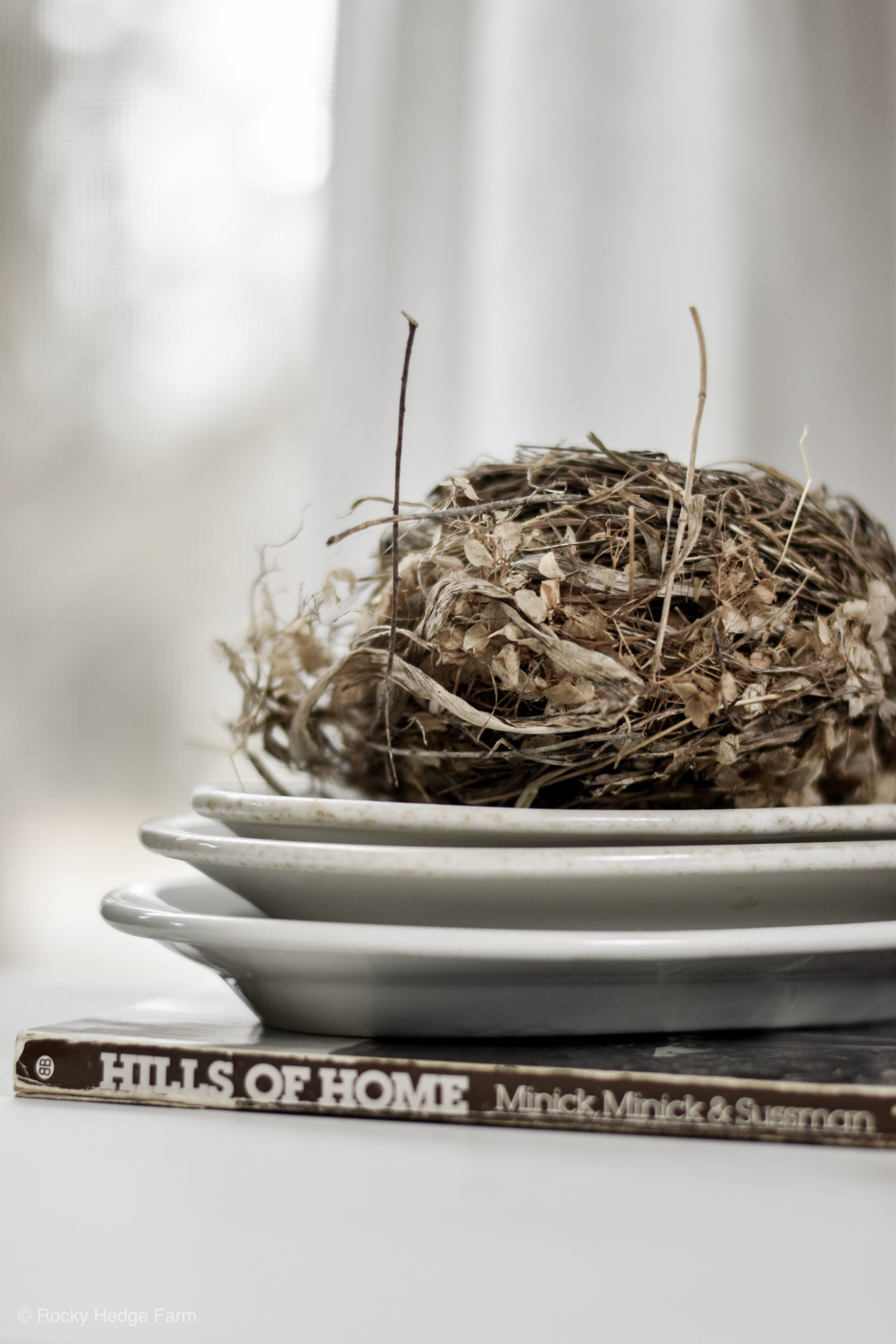 Spring Farmhouse Vignette | Birds Nest and Ironstone | Rocky Hedge Farm