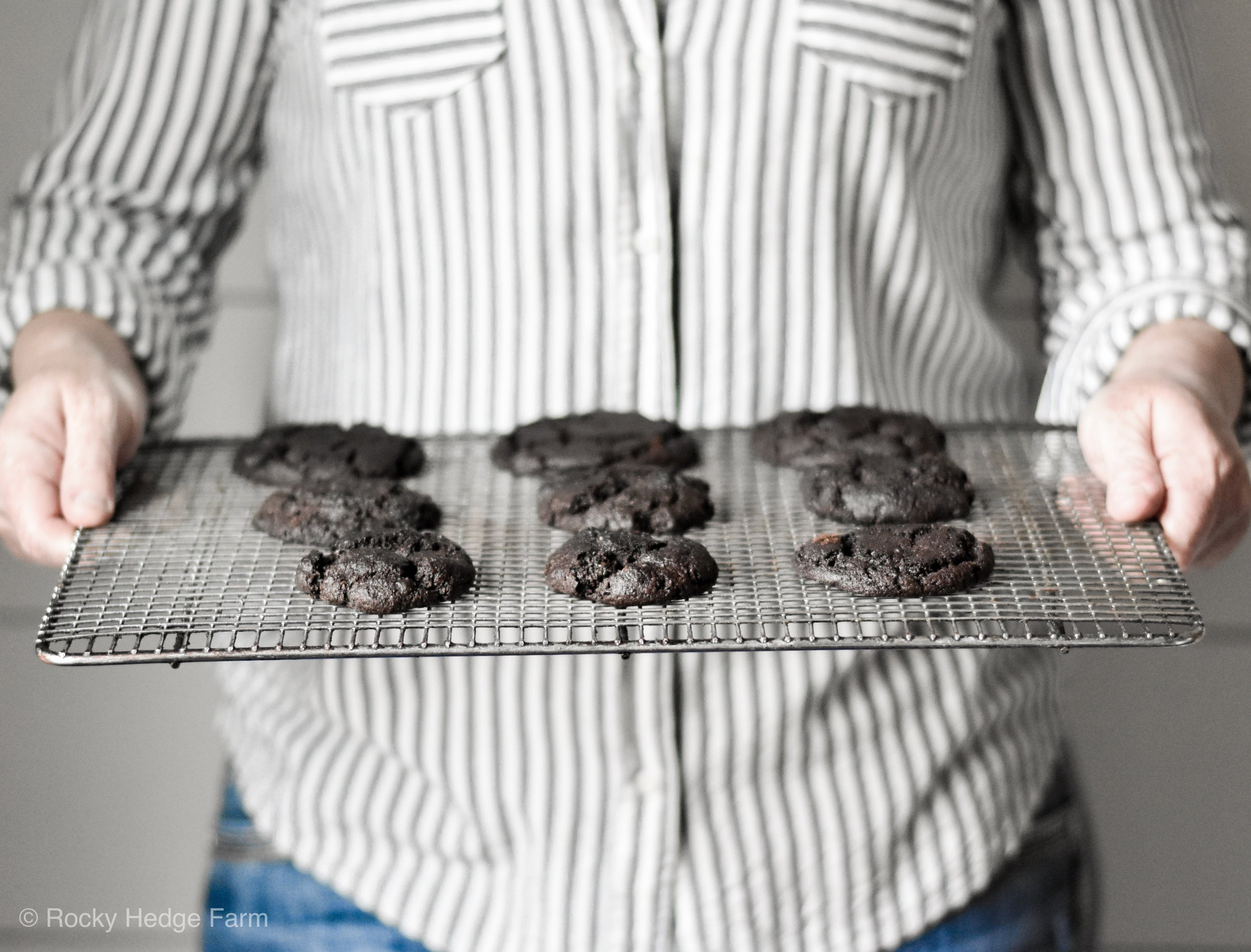 Xylitol Sugar-Free Low-Carb Chocolate Peanut Butter Cookie Recipe | Rocky Hedge Farm