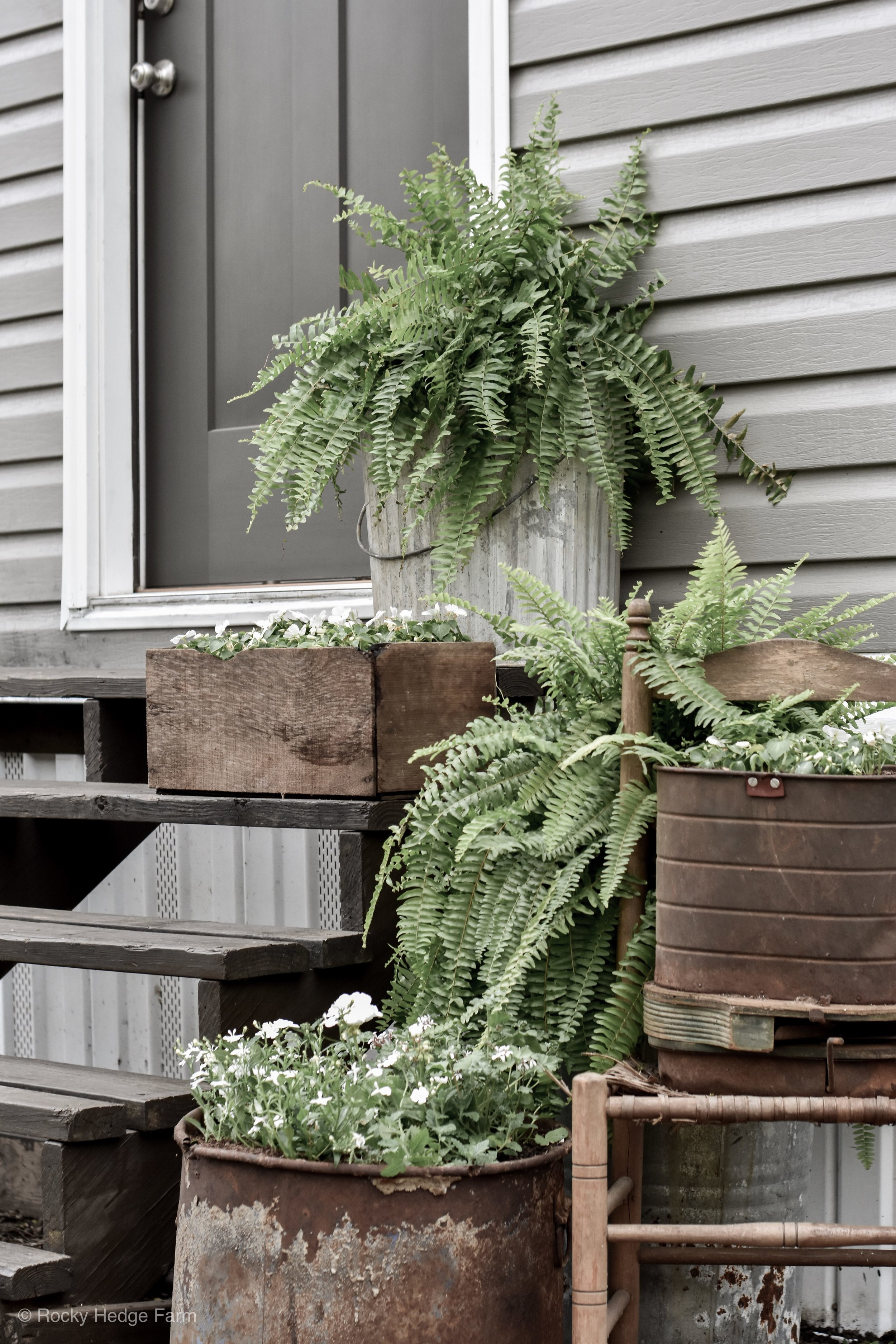 Old antique vintage galvanized flower containers | Rocky Hedge Farm