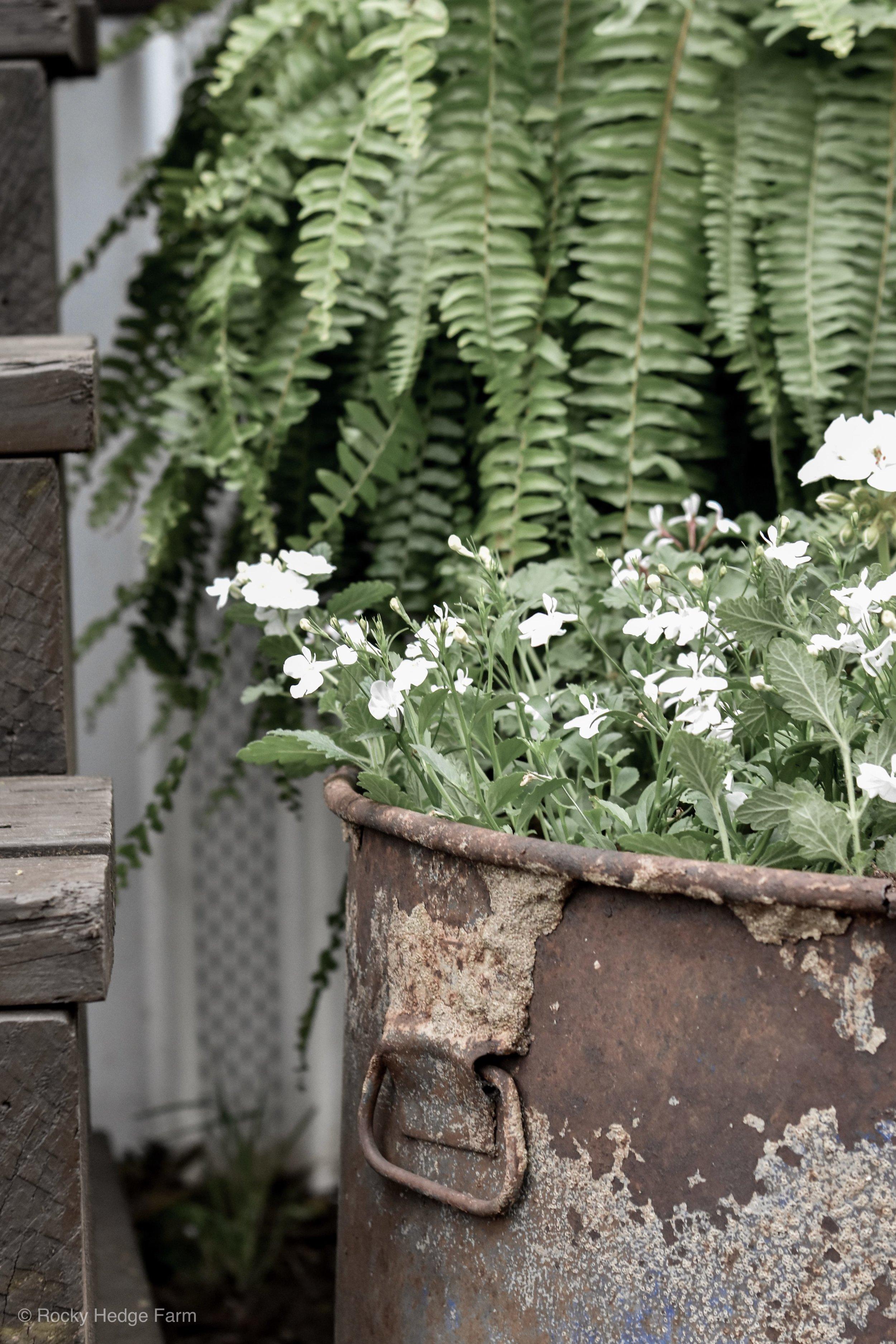 Rustic Garden Planter | Rocky Hedge Farm