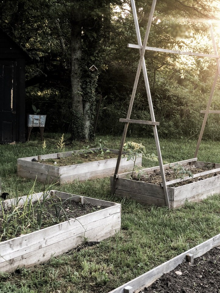 Raised Bed Vegetable Garden Tour | Rocky Hedge Farm
