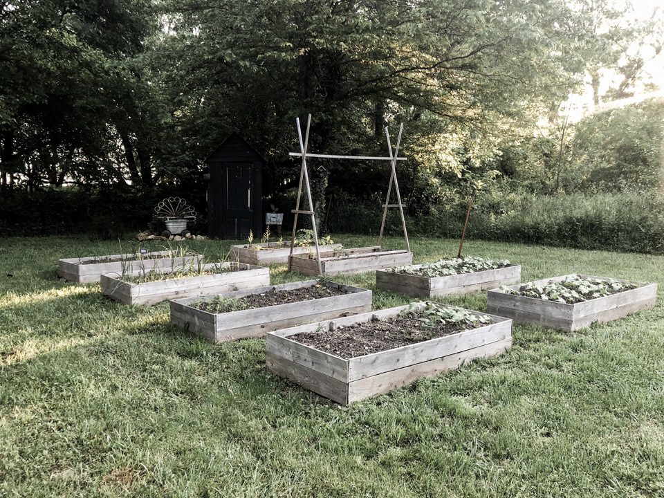 Raised Vegetable Garden Tour - Late Spring | Rocky Hedge Farm