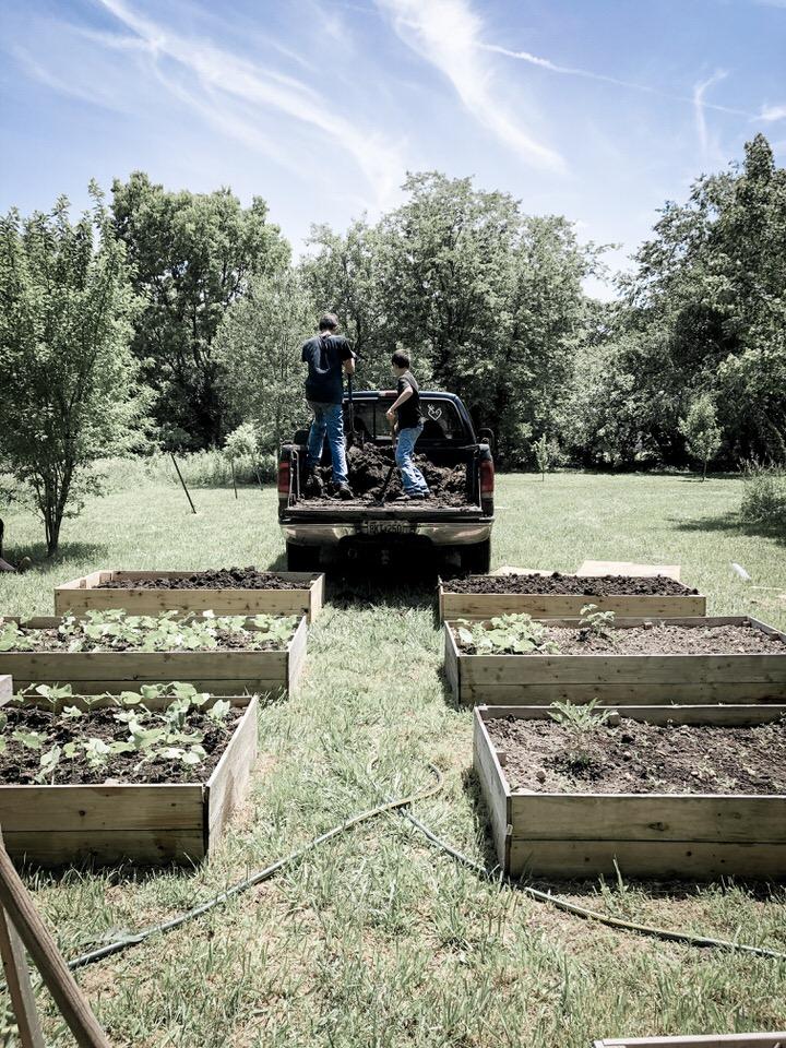 DIY种植菜园苗床,在哪里可以买到好的花园泥土岩石篱笆农场亚博体育阿根廷合作伙伴