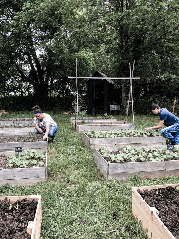 在高高的菜园床上拔草岩石篱笆农场亚博体育阿根廷合作伙伴
