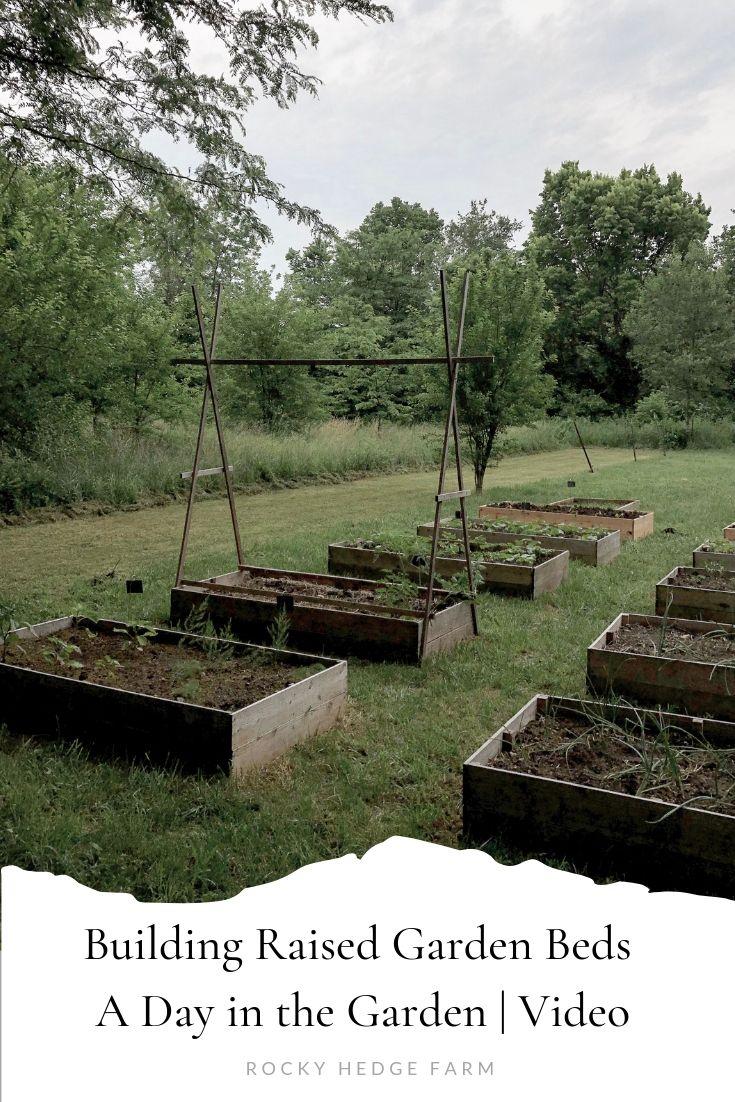DIY种植蔬菜园,在花园里一天录像岩石篱笆农场亚博体育阿根廷合作伙伴