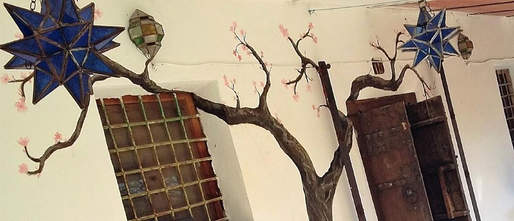 The start of the 'Magic Lantern Tree' at Bagend, Rustic Yoga Retreats