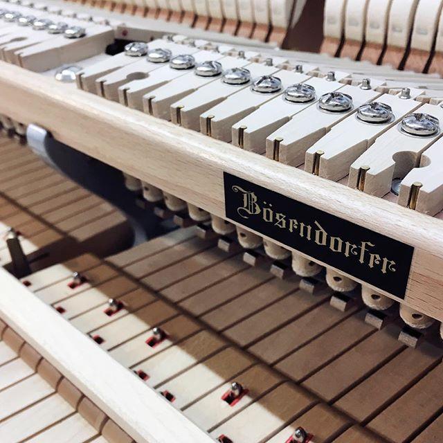 It's a Bösendorfer day in the shop today. #piano #boise #bosendorfer #beautiful