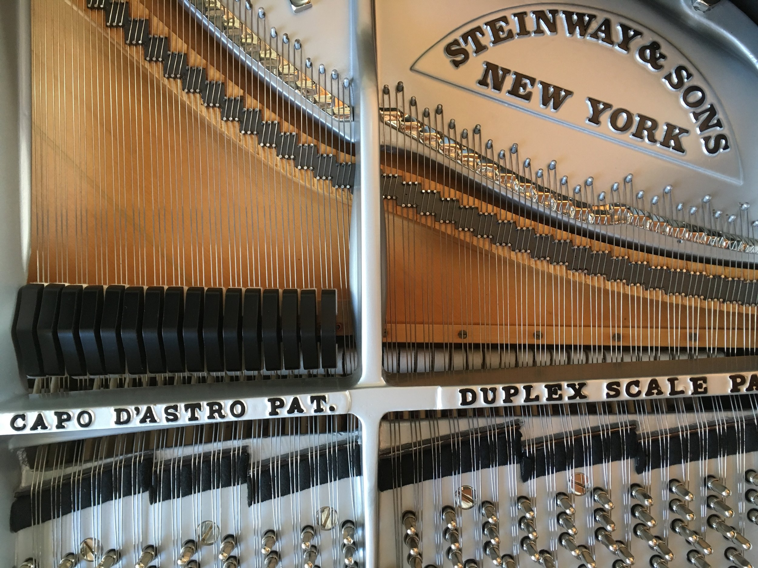 The piano tuning pins can be seen along the bottom edge of the photo above.