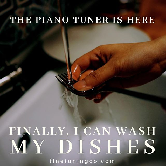 It's funny how we can all be so different and so similar at the same time. I am surprised at how many people wash their dishes as soon as I start tuning their piano. It's actually quite a lot. I would love to hear from other piano technicians if they have experienced the same and if there are piano owners out there who have noticed that they do this. 😆 #piano #pianotuner #pianotechnician #boise #music #dishes #dirtydishes