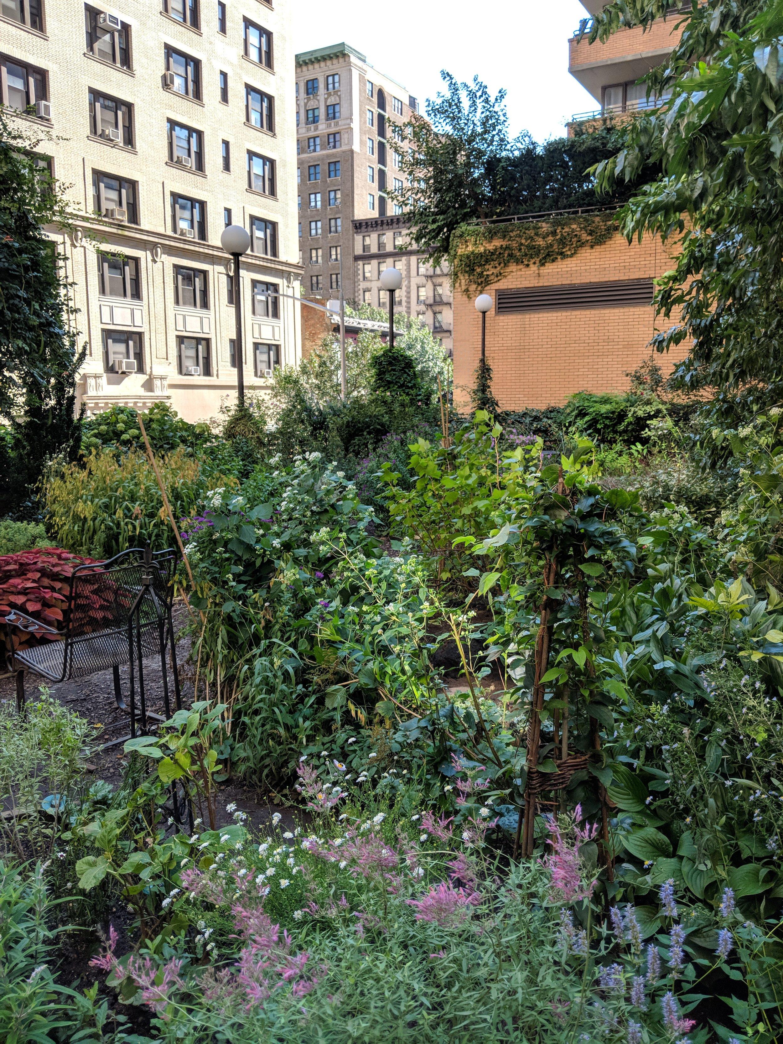 NYC_roof_garden.jpg