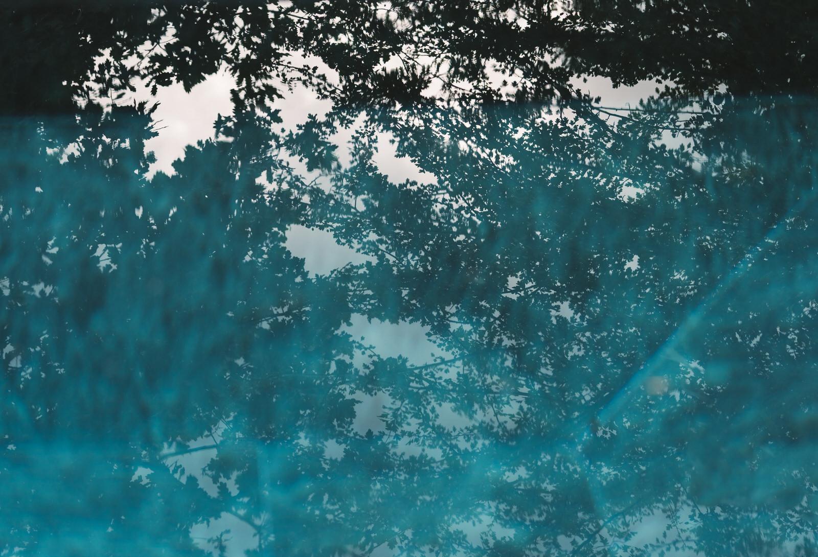 Tara-Sam-ANRAN-Devon-(Flashbulb)0083.jpg