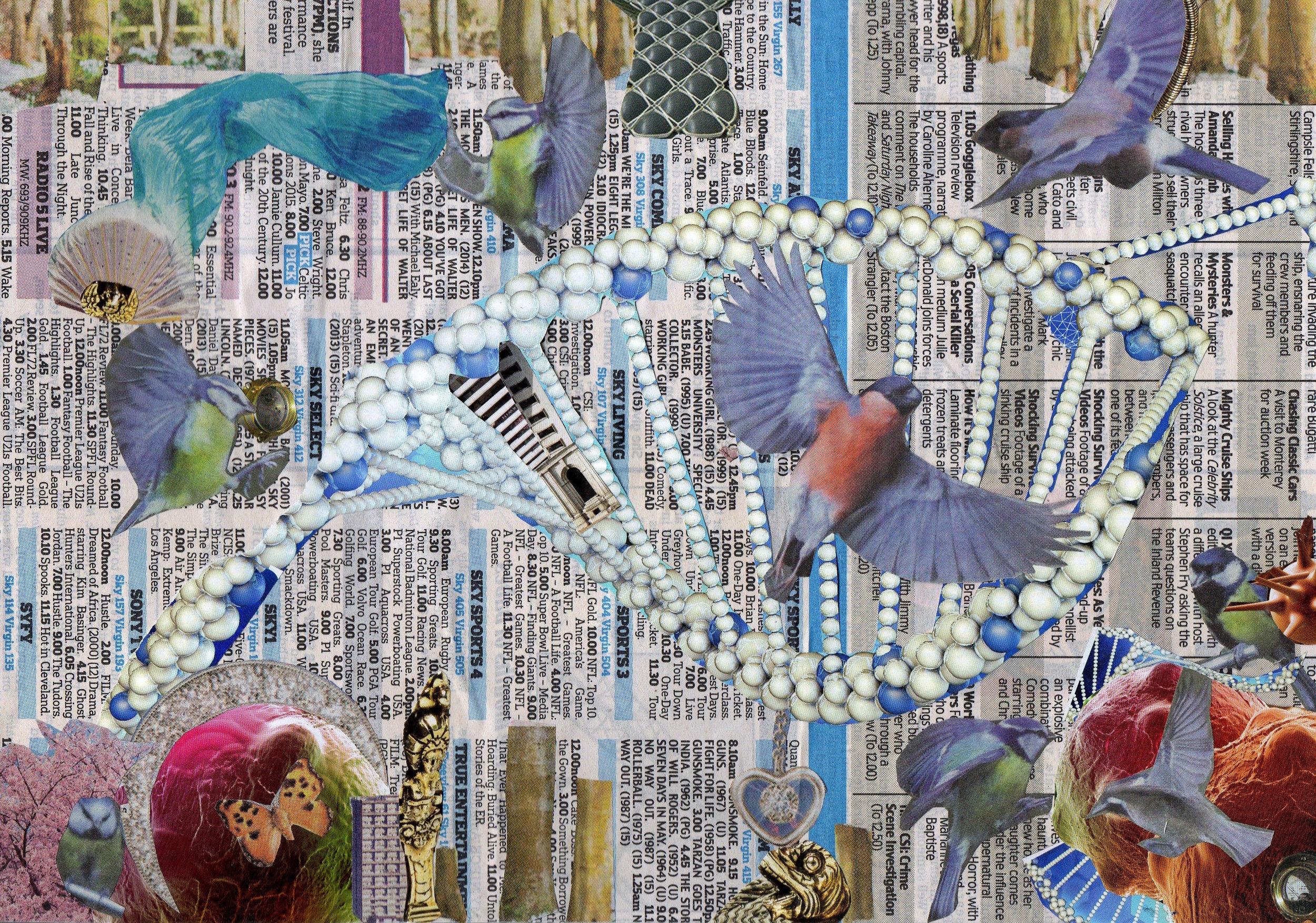 Birds (2015)-Sarah Hill 3.jpeg