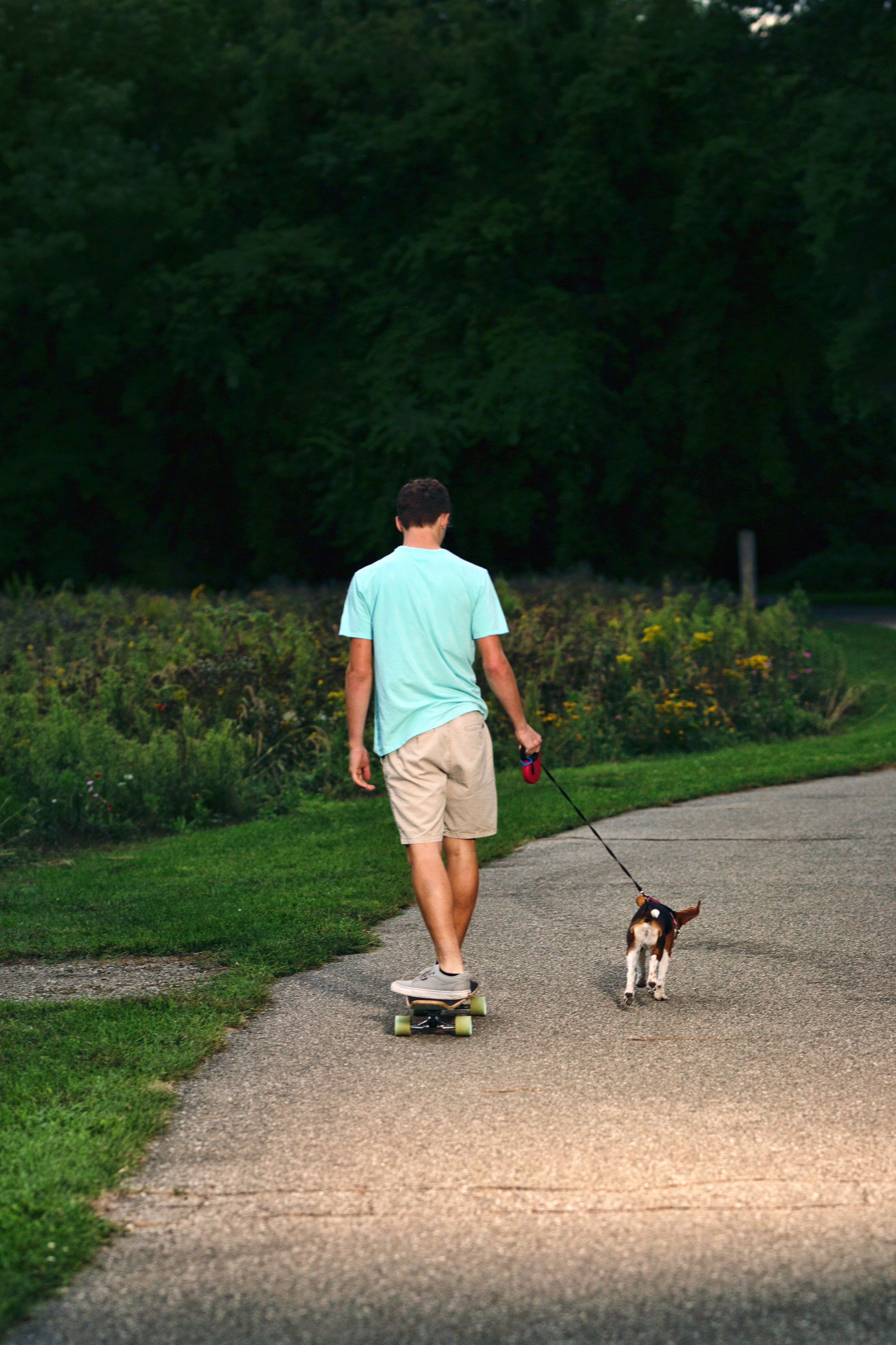 boy skateboarding with dog