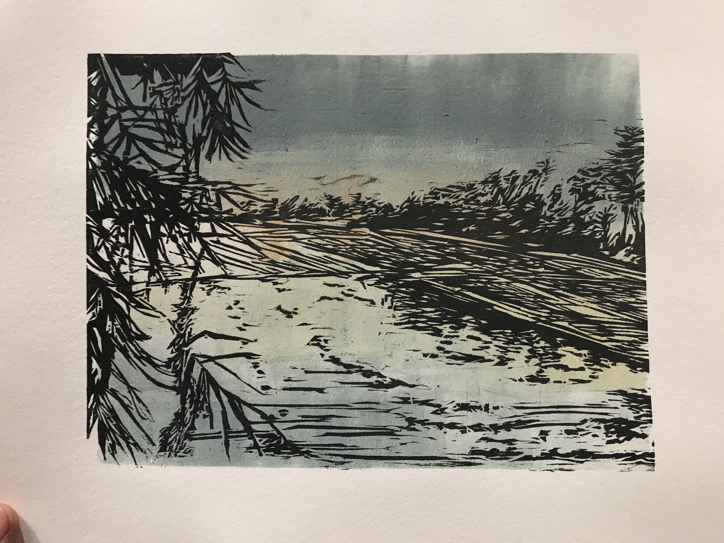 """Mae Jong, Thailand   Woodcut and Monotype   Paper: 10""""X11""""   Images: 5 ¾"""" x 8""""   2017"""