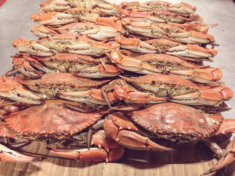 blue-crab-fade.jpg