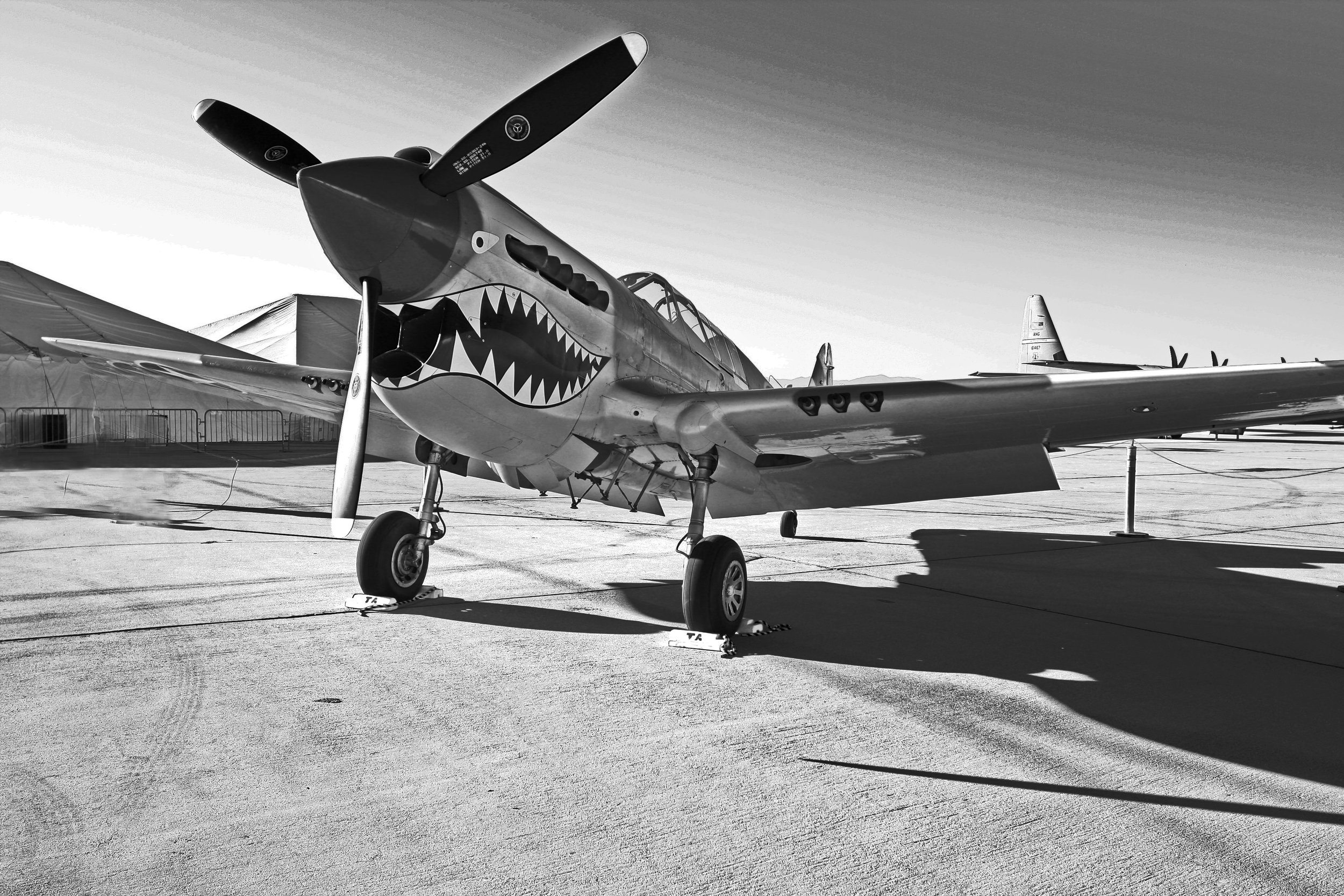 Flying_Tigers_(4447711949).jpg