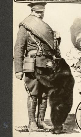 Winnie_the_Bear_1915.jpg