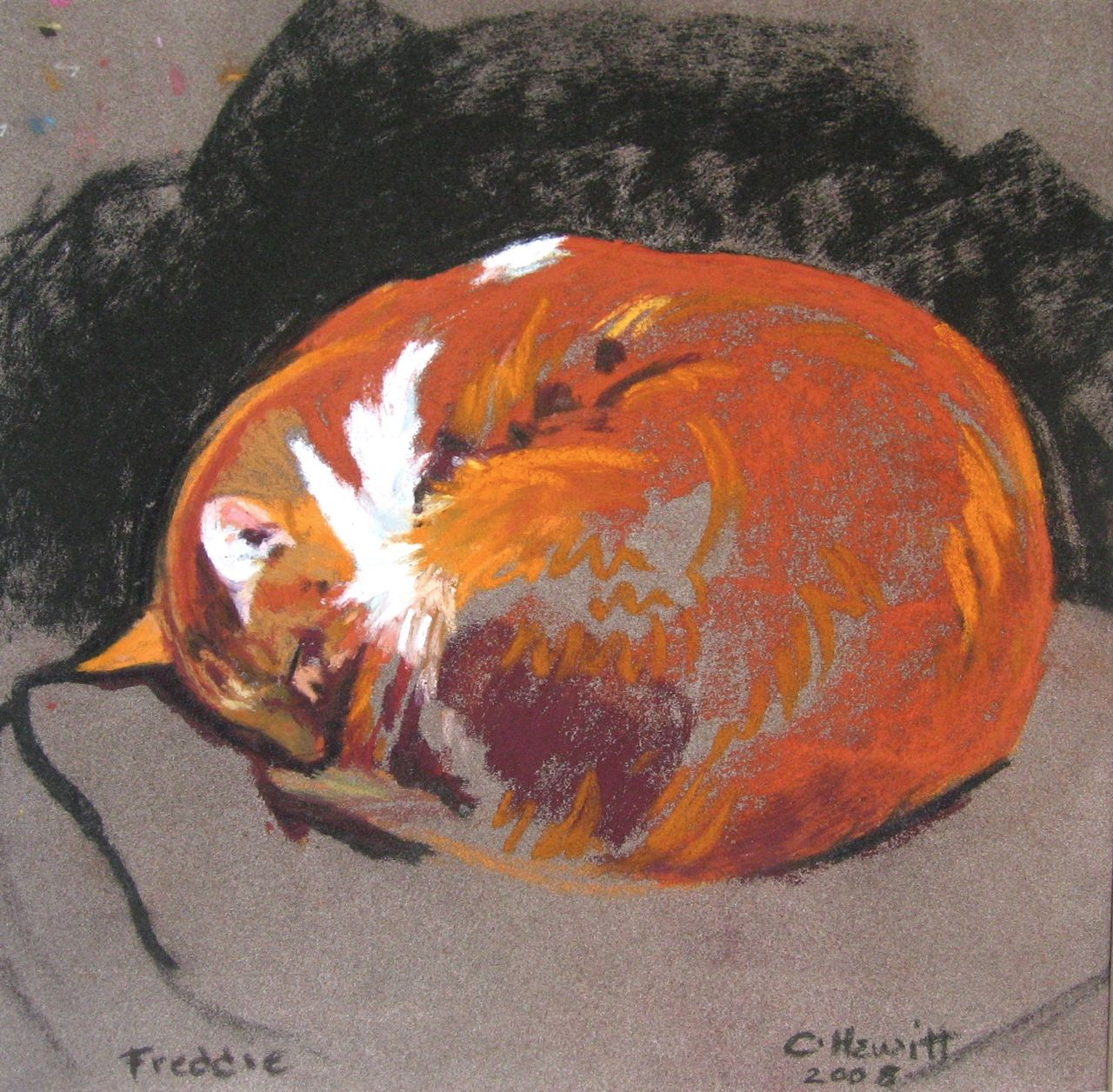 'Freddie', pastel, 24x24cm