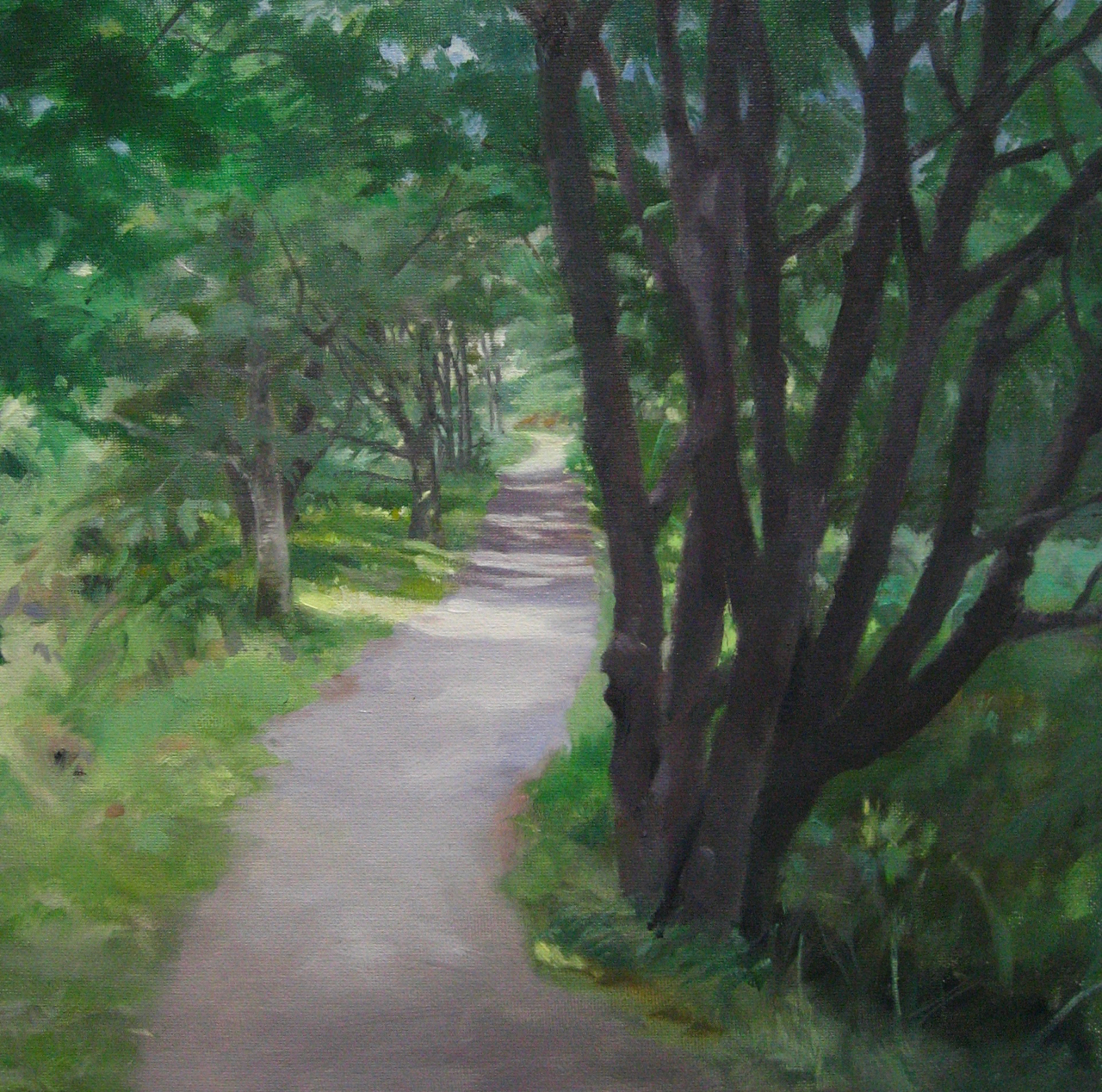 'Path at Creag Meagaidh', Highlands. Oil on canvas 30x34cm .