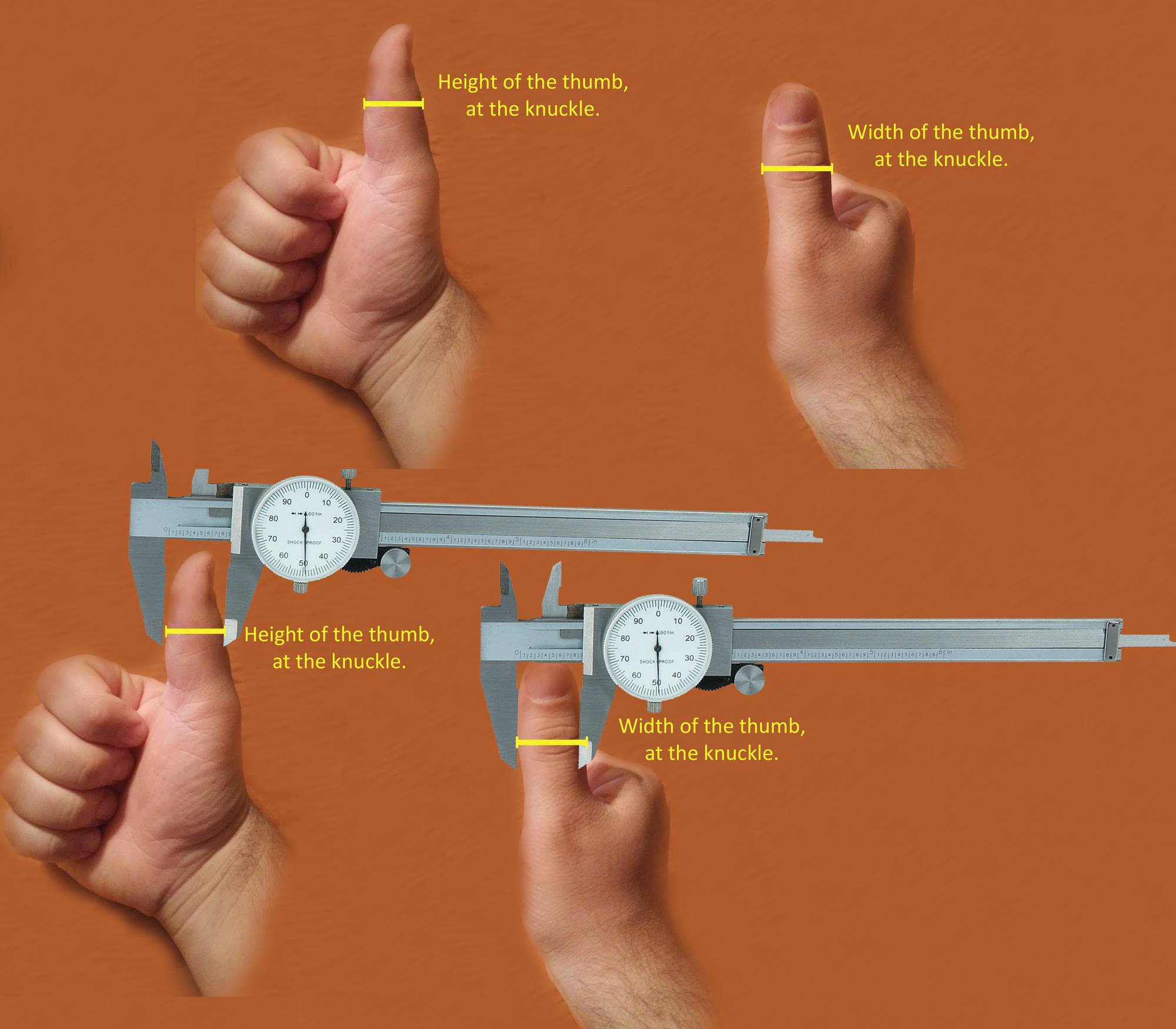 How to measure your thumb correctly for a set of rings