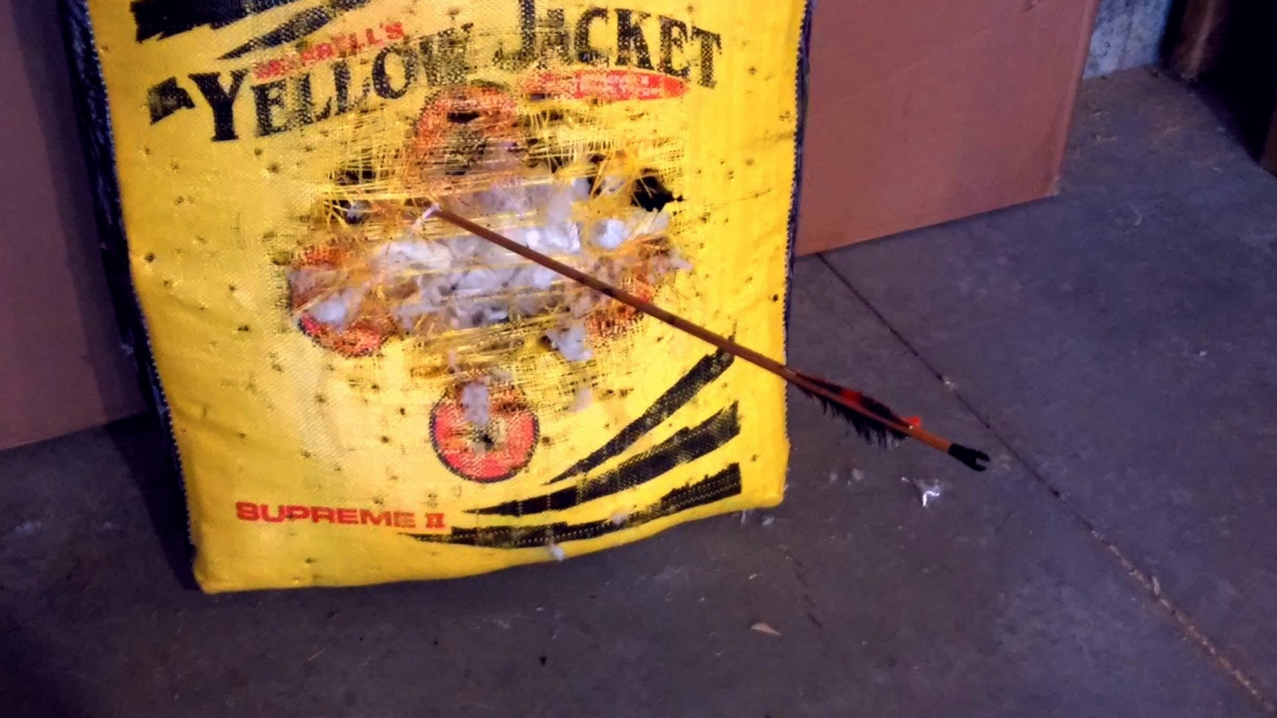 Progress! An arrow propelled into the target by a 60 pound bow.