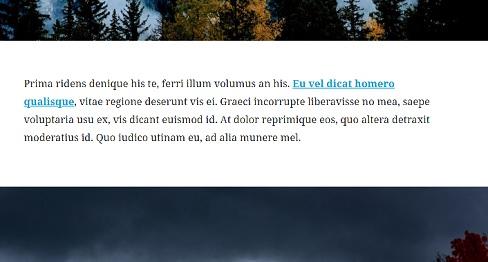 Lorem ipsum (from Gutenberg app page).