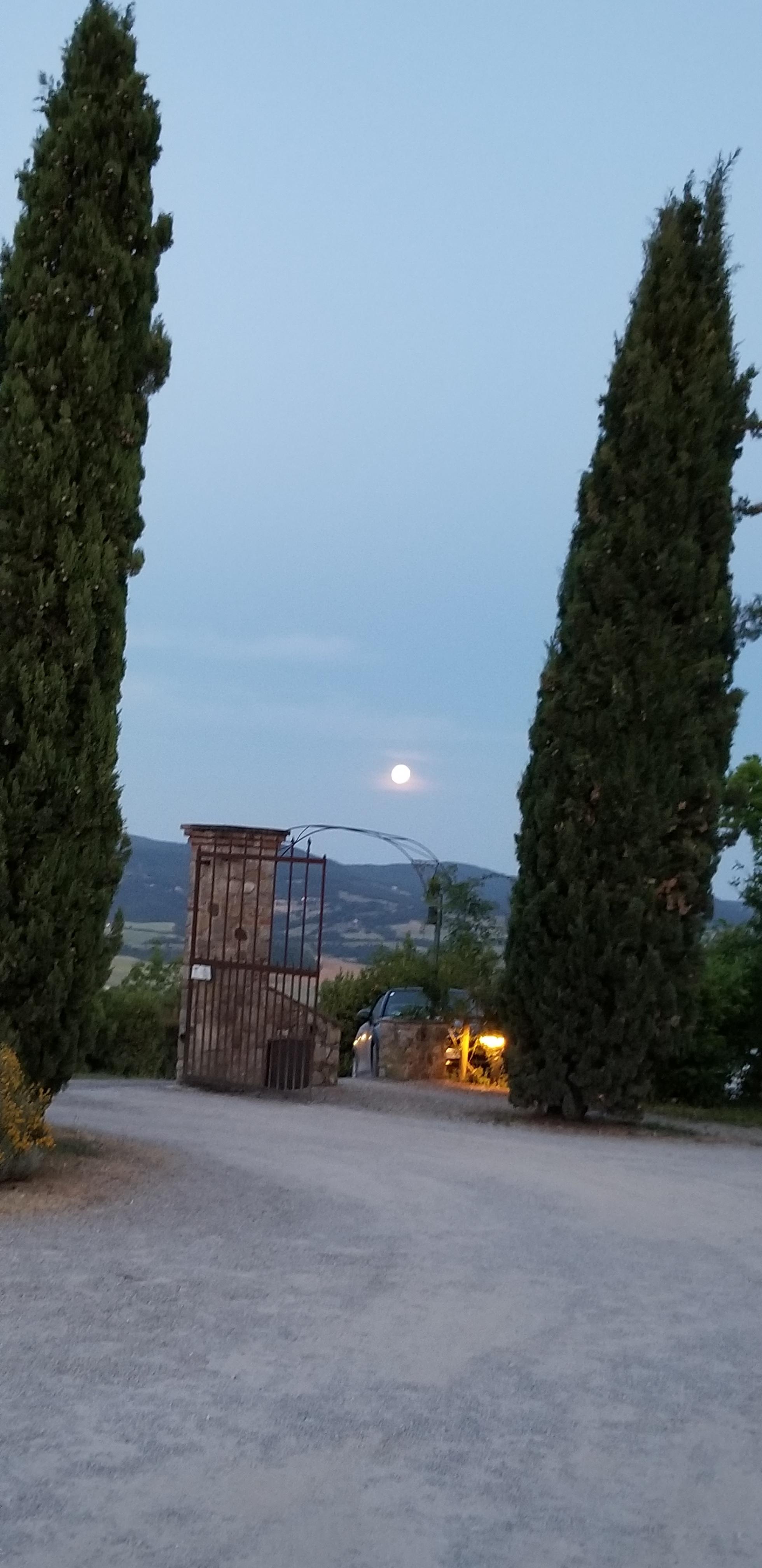 moon il poggio.jpg