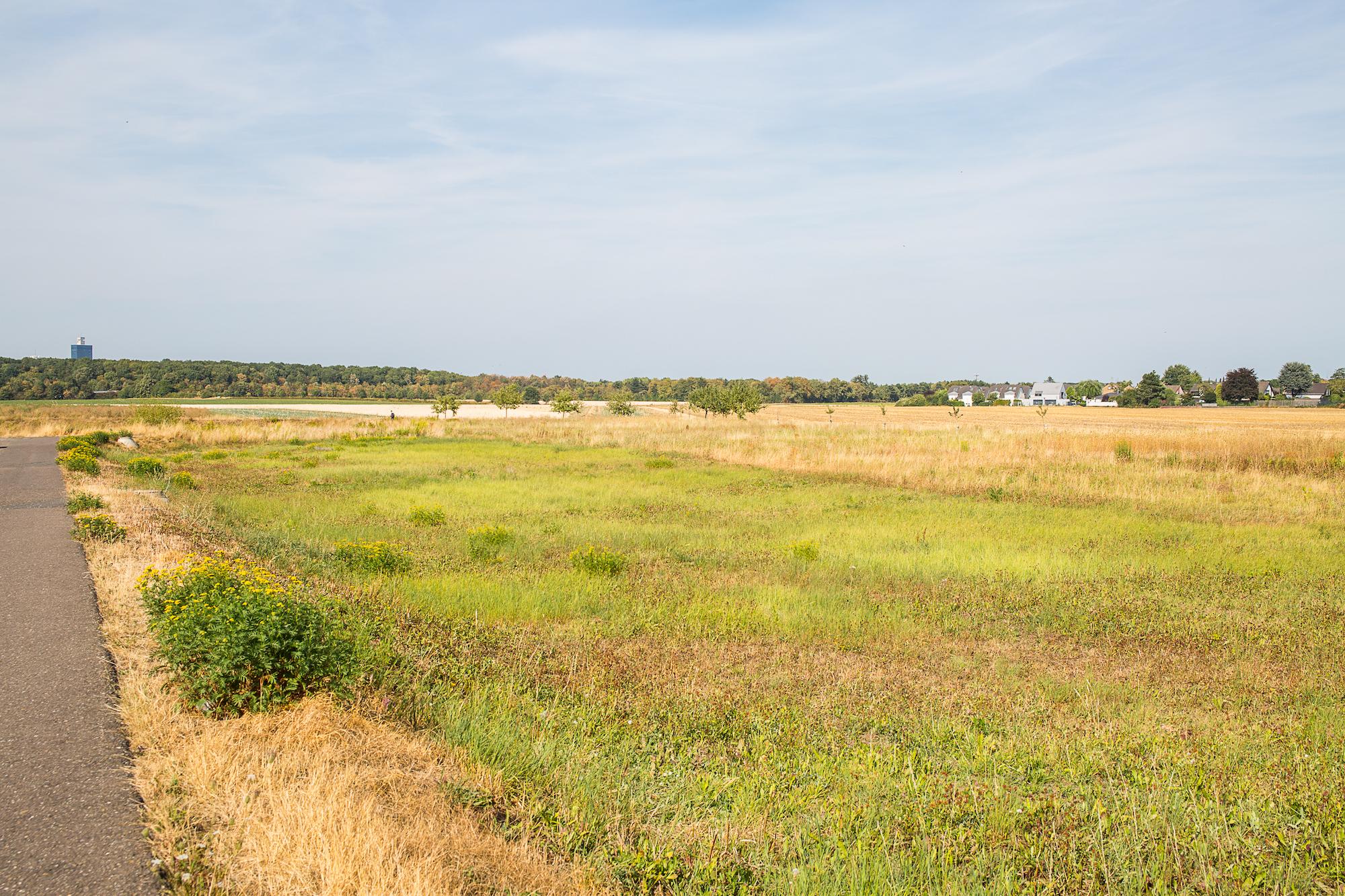 KH_Rondorf_Panorama.jpg