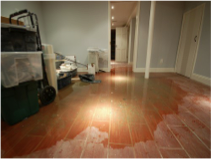 Water damage from client home