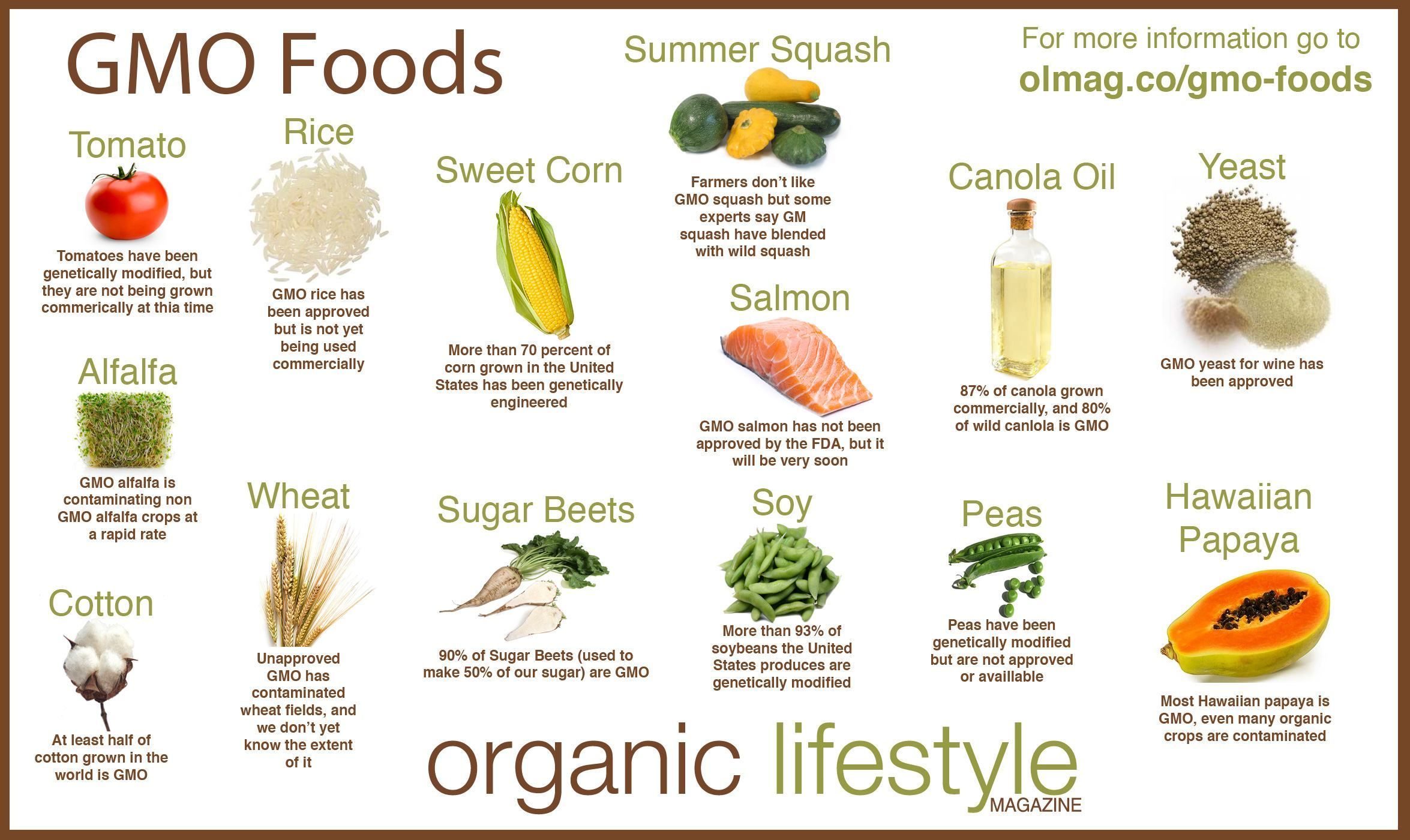 gmo-Foods-Infographic.jpg