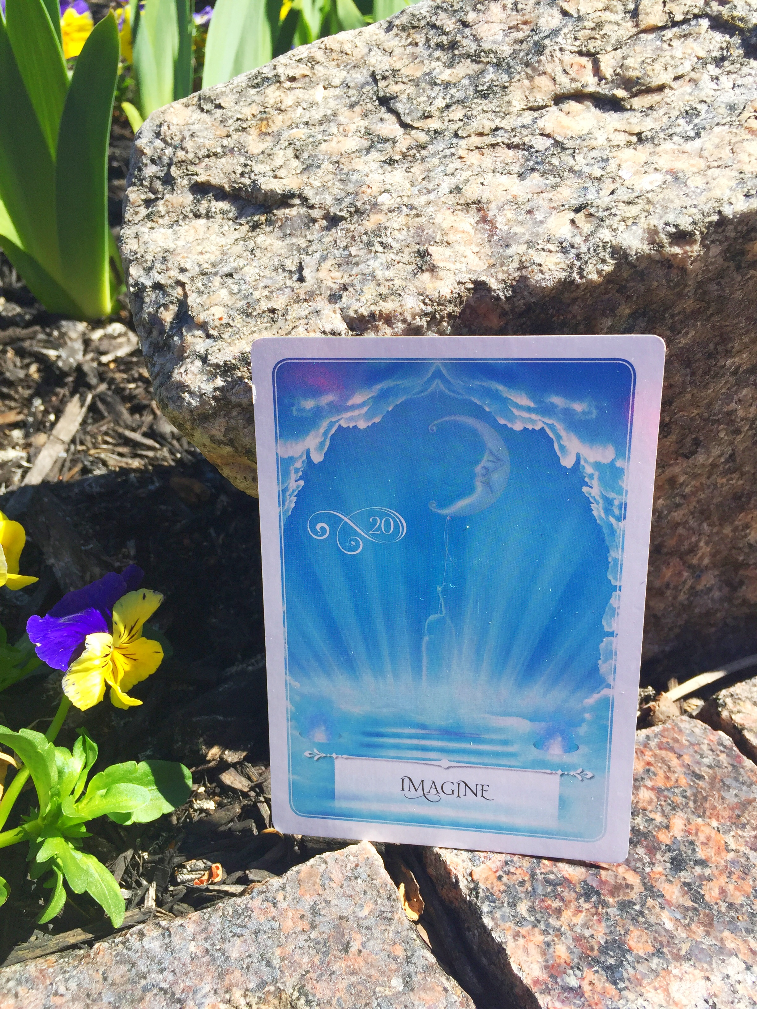 Imagine (Wisdom of the Oracle, Hay House Publishing)