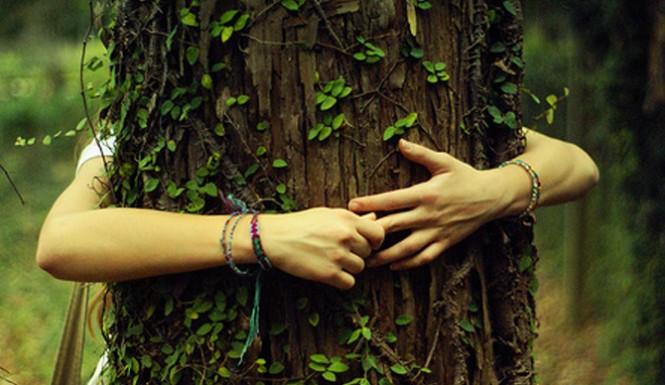 hippie-tree-hugger-header-665x385.jpg