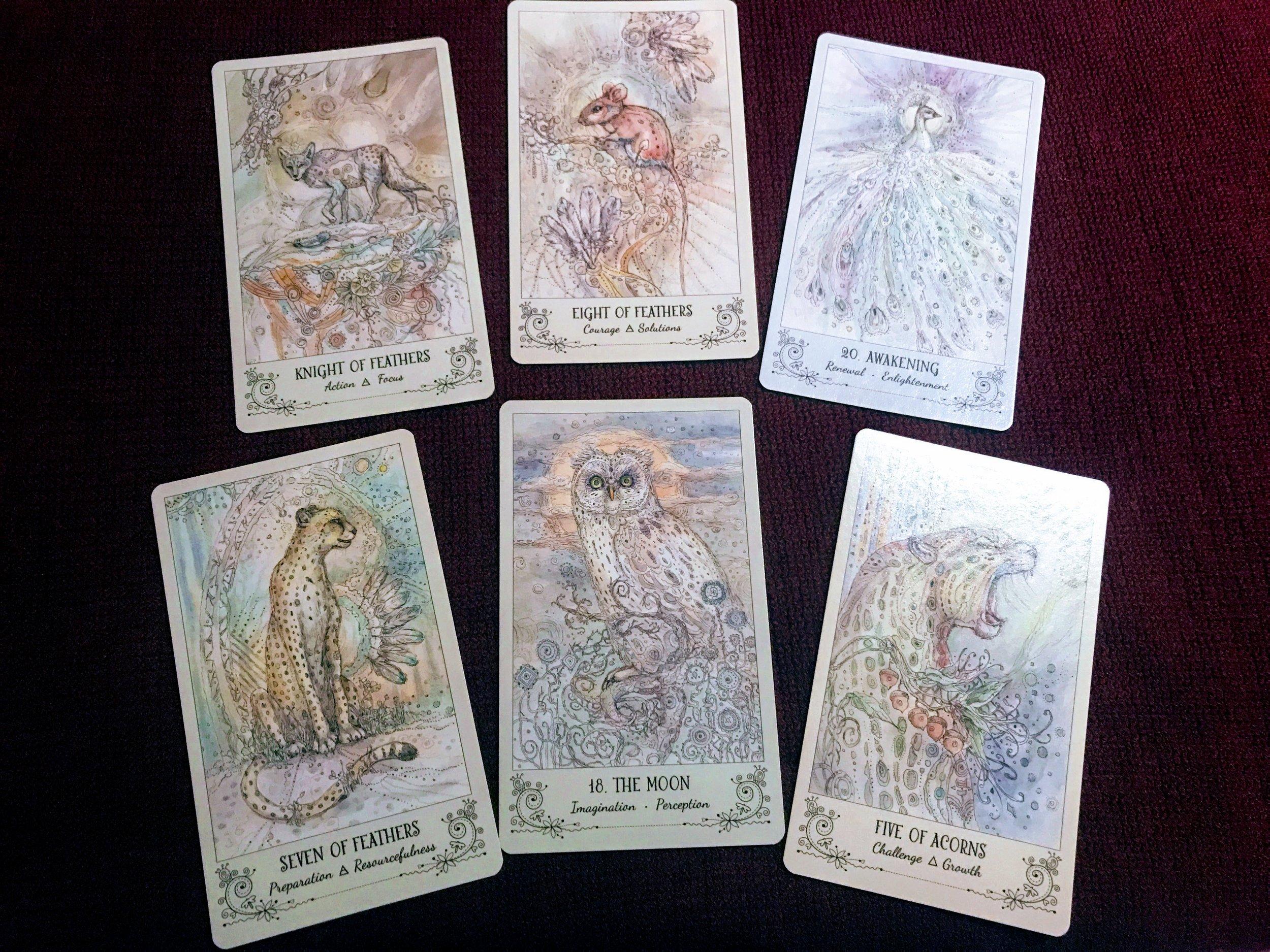 Spiritsong Tarot Deck Interview - Maven Unmasked