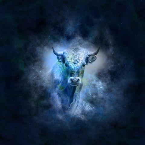 Taurus horoscope-639127__480.jpg