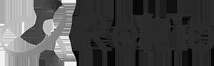 Reltio logo[1].png