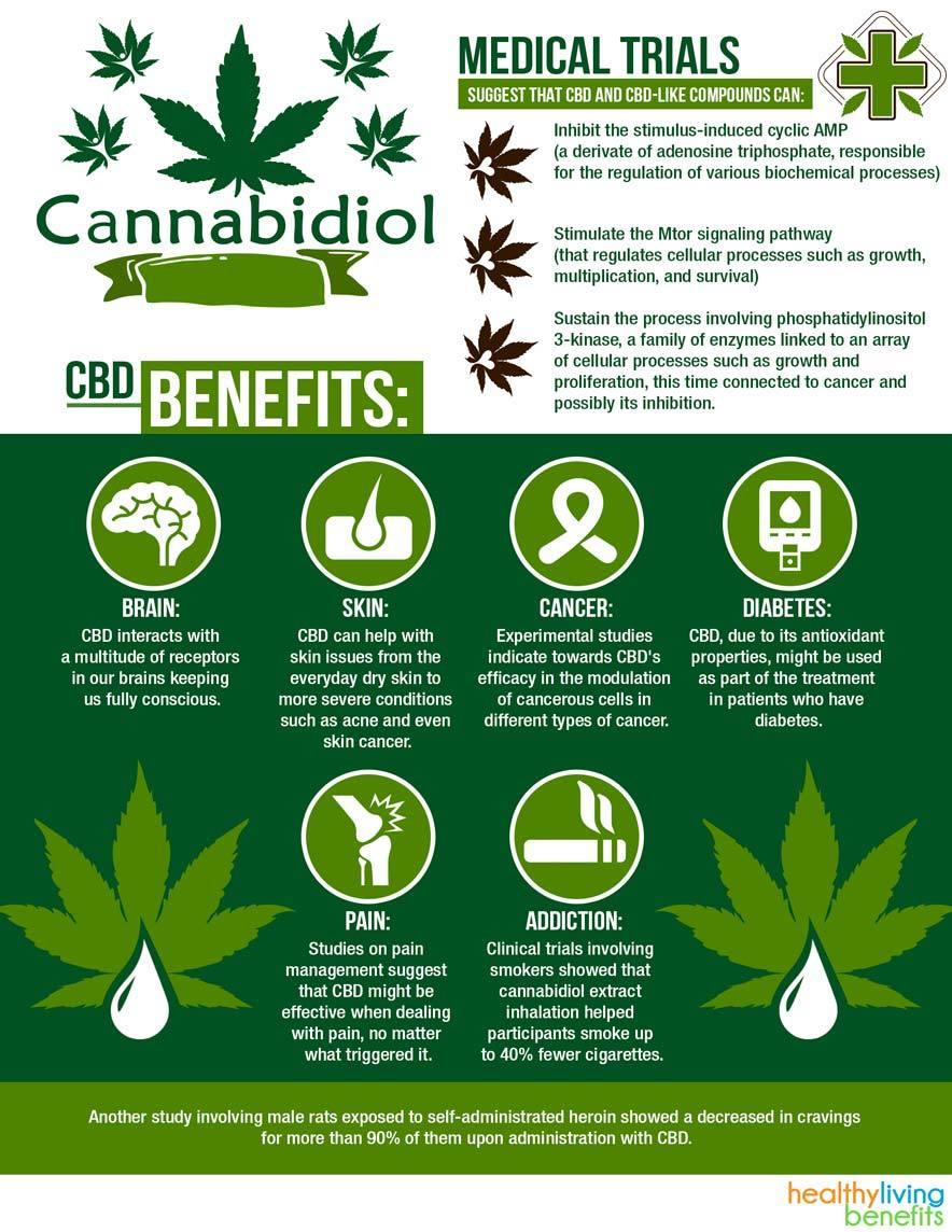 cbd-oil-benefits-explained-infographic-884x1144.jpg