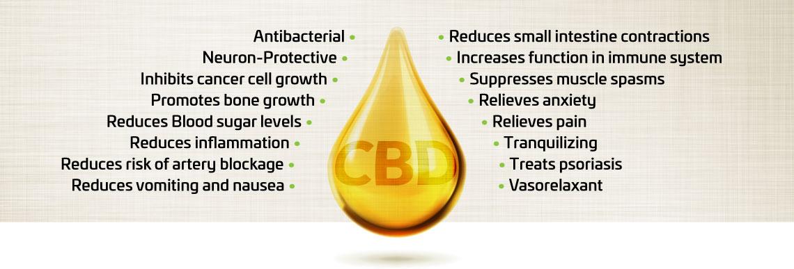 CBD oil drop.jpg