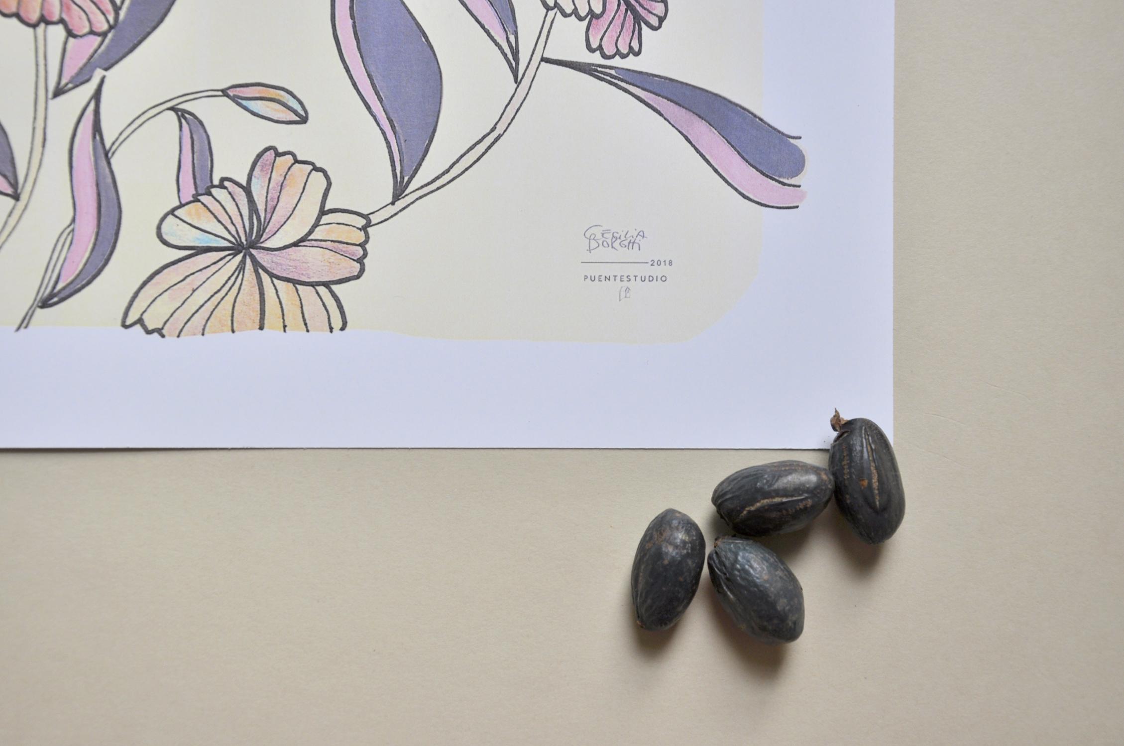 ceciliaborghi_puentestudio_magnolia5.jpg