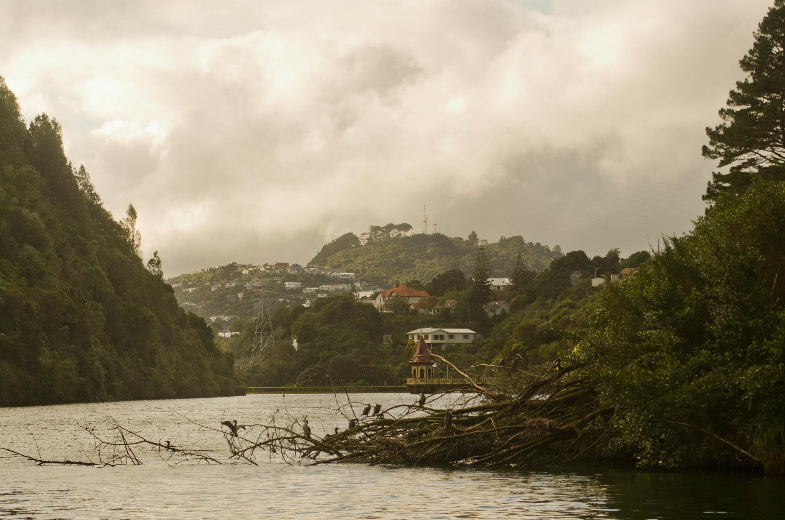 Zealandia, Wellington, New Zealand